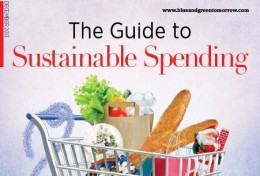 The Guide to Sustainable Spending