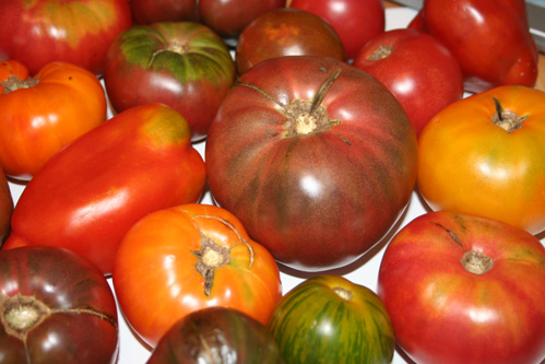 Fresh Direct's heirloom tomatoes